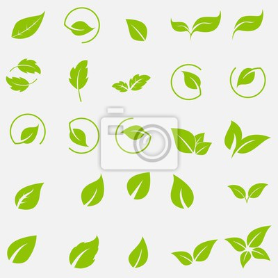 Naklejka Vector collection with green leaves in flat style for icons and graphic design