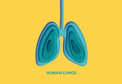 Naklejka Vector illustration of lungs in paper art style.