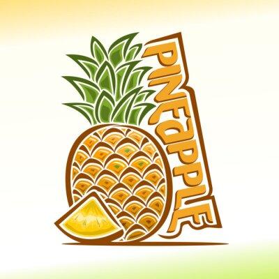 Naklejka Vector illustration on the theme of pineapple