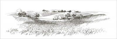 Naklejka Vector sketch Green grass field on small hills. Meadow, alkali, lye, grassland, pommel, lea, pasturage, farm. Rural scenery landscape panorama of countryside pastures. illustration