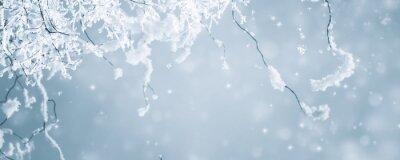 Naklejka verschneite zweige vor abstraktem hintergrund