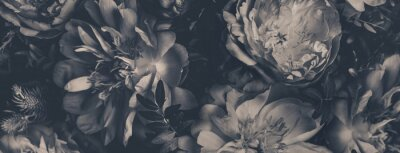 Naklejka Vintage bouquet of peonies. Floristic decoration. Floral background. Black and white baroque old fashiones style image. Natural flowers pattern wallpaper or greeting card