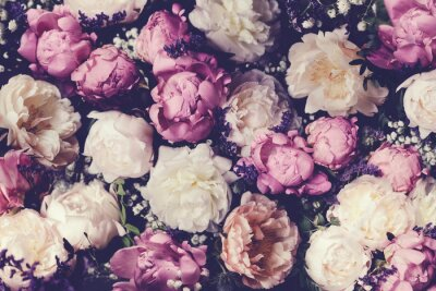 Naklejka Vintage bouquet of pink and white peonies. Floristic decoration. Floral background. Baroque old fashiones style image. Natural flowers pattern wallpaper or greeting card