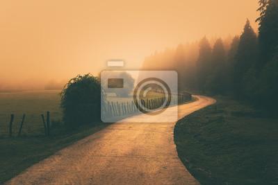 Naklejka vintage nature landscape with a foggy path