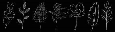 Naklejka Vintage seamless floral pattern. Spring flowers and herbs. Botanical illustration.