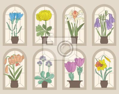 Vintage Style Kwiaty Na Parapety (wektor zestaw)
