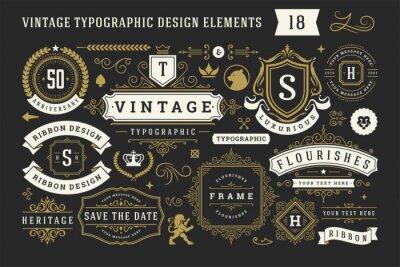 Naklejka Vintage typographic decorative ornament design elements set vector illustration