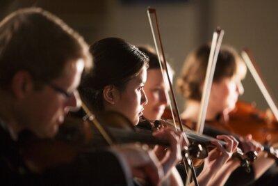Naklejka Violinists performing