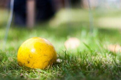 W wieku żółty krokiet piłka leży w trawie czekając być odtwarzane. Close-up. Grał często w Danii i Szwecji.