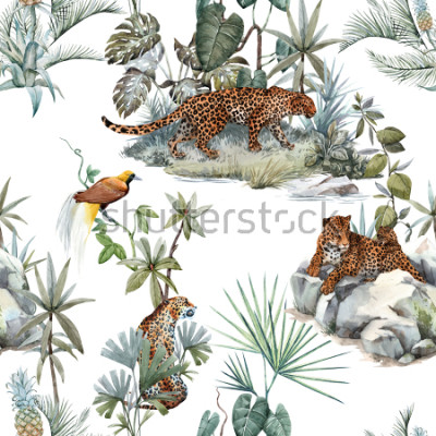 Naklejka Watercolor tropical pattern with a leopard animal, a wild leopardle walking through the jungle, a leopard with a cub lying on the beds. Birds of Paradise on the tree. Palm tree and Monsterra plant.