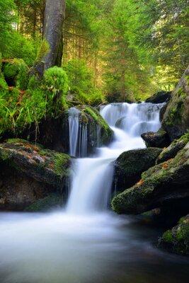 Naklejka Waterfall in the national park Sumava-Czech Republic
