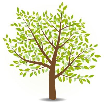 Naklejka wektor drzewo