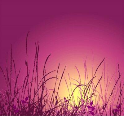 Naklejka wektor sylwetka trawy i słońca