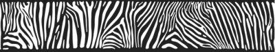 Naklejka Wektor tła z zebry skóry