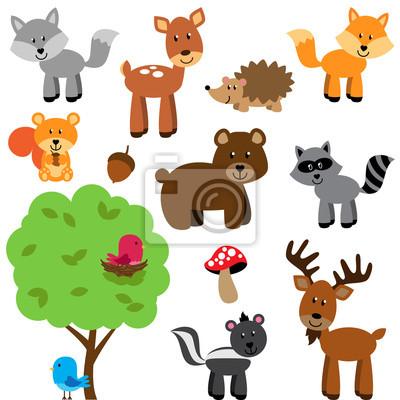 Naklejka Wektor zestaw ślicznych lasów i zwierząt leśnych