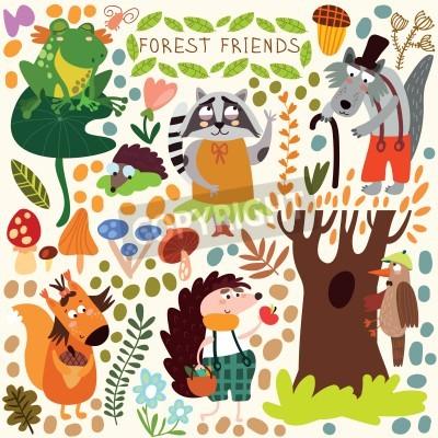 Naklejka Wektor zestaw ślicznych lasu i leśnych zwierząt. Wiewiórka, żaba, dzięcioł, jeż, wilk, szop, Motyl. (Wszystkie obiekty są izolowane grupy, dzięki czemu można poruszać się i oddzielić je)