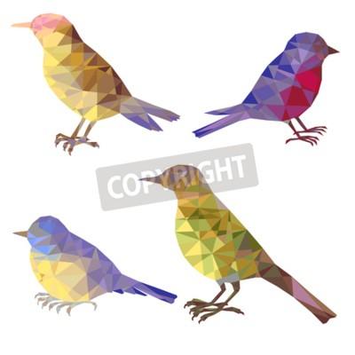 Naklejka wektor zestaw sylwetki ptaków wielokąta