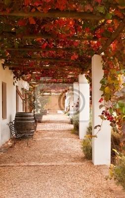 Naklejka Weranda z winogron liści jesieni? Collours