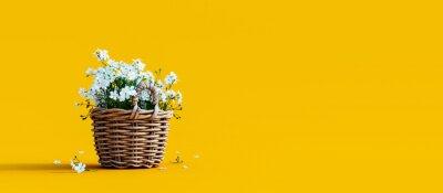 Naklejka White flowers in wooden basket on yellow spring background 3D Rendering