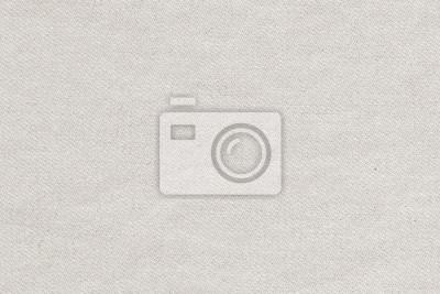 White Texture Fabric