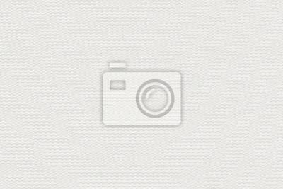 Naklejka White Texture Fabric
