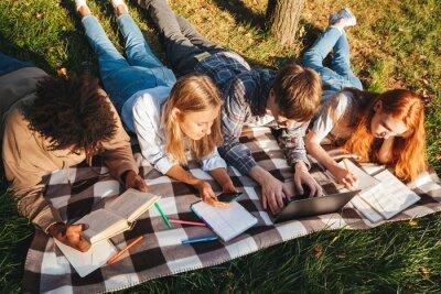 Naklejka Widok z góry grupy szczęśliwych studentów wieloetnicznych