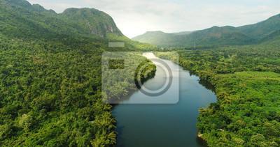 Naklejka Widok z lotu ptaka rzeka w tropikalnym zielonym lesie z górami w tle
