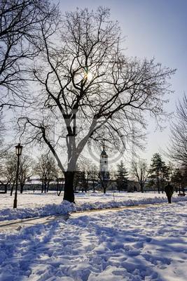 Widok z parku Kalemegdan w zimie