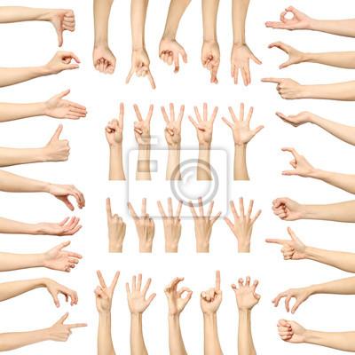 Naklejka Wiele gestów dłoni kobiety samodzielnie na białym tle
