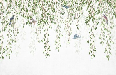 Naklejka Willow branches hanging from above with birds on a white background. Wallpaper, murals and wall paintings for interior printing.
