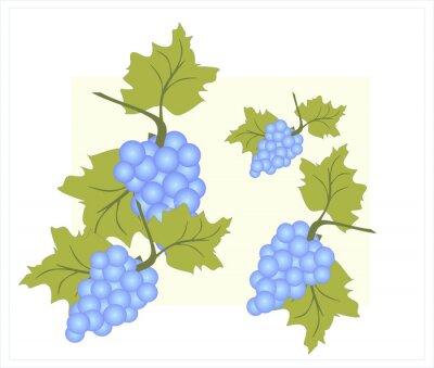 Naklejka wino z winogron zdrowia