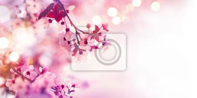 Naklejka Wiosna kwiat granicy z różowym drzewa kwitnące