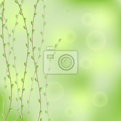 wiosna tła