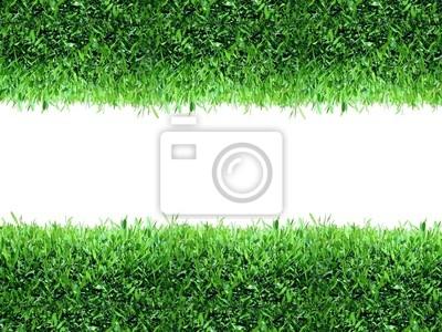 Naklejka Wiosna, zielonym tle trawy