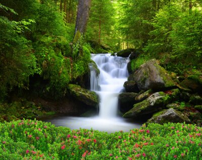 Naklejka Wodospad w parku narodowym Sumava-Czechy