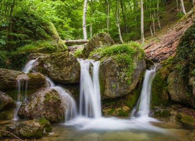 Naklejka Wodospad w zielonym lesie