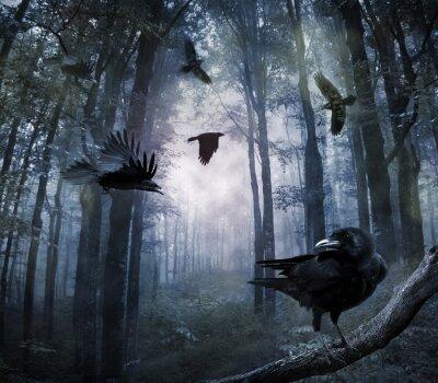 Naklejka Wrony w lesie