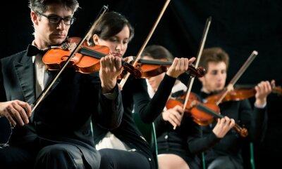 Naklejka Wykonywanie orkiestra skrzypce