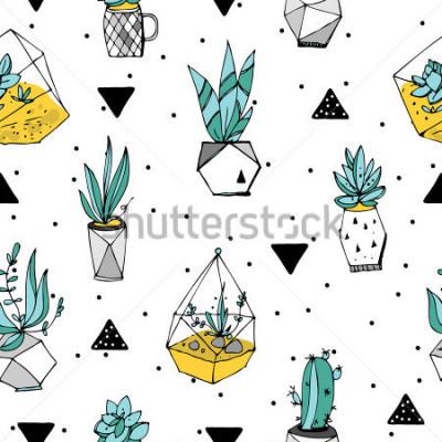 Naklejka Wzór terrarium. Tekstura sukulenty. Ręcznie rysowane minimalistyczny ilustracja. Skandynawski design z elementami kwiatowymi i geometrycznymi