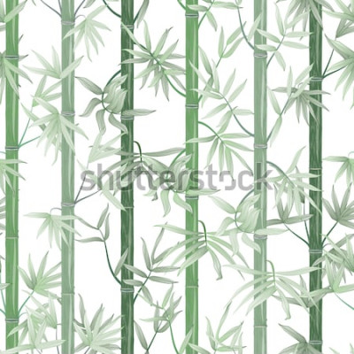 Naklejka Wzór z bambusa. Ilustracji wektorowych.