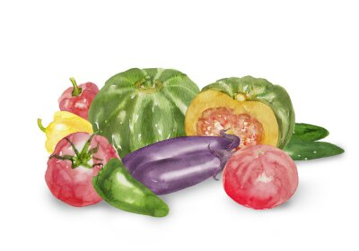 Naklejka いろいろ な 夏 野菜 の 水彩 イラスト