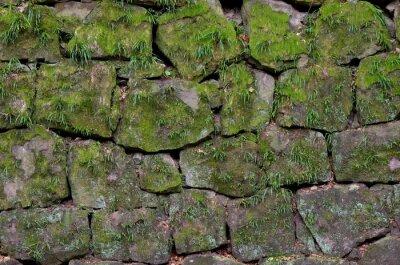 Naklejka 和 歌 山城 の 石 垣
