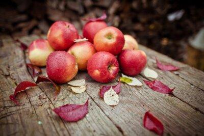 Naklejka яблоки в деревне