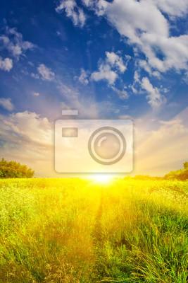 Солнечная тропа