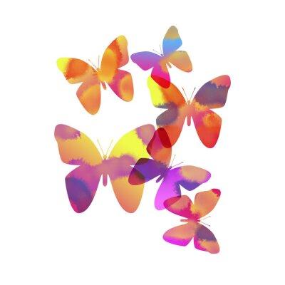 Naklejka 蝶 々