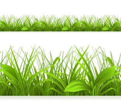 Naklejka Wiosna trawa zielona, bez szwu granicy