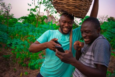 Naklejka young black men in the farm going through things on the phone