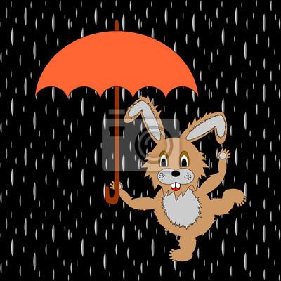 Naklejka Zabawny królik z parasolem w deszczu
