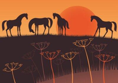 Naklejka Zachód słońca i konie