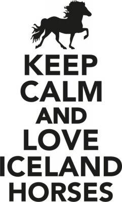 Naklejka Zachowaj spokój i miłość Islandii konia